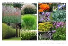Minimalistisk have