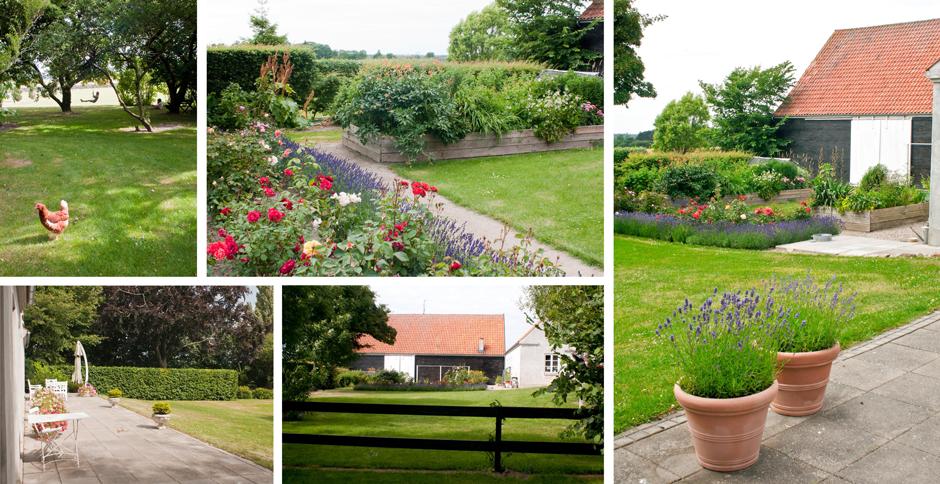 Landbohave, rosenbed, højbed