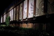 aftenfoto af kristians Lange vægmaleri i lysskakten på plejehjemmet Siffsgård landskabs ide til projektet og landskabsarkitekt Julie Trier