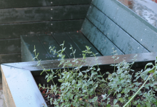 Bænk højbed linolie københavnergrøn bosted stauder krydderurter
